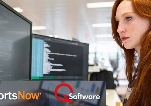 ReportsNow and QSoftware JD Edwards Security Bundle